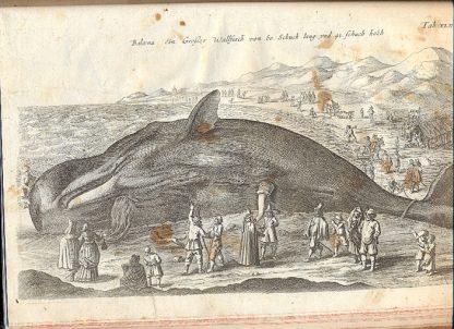 Historiae Naturalis de Avibus... , Insectis..., Serpentibus..., Quadrupedibus... , Piscibus et Cetis..., Exanguibus..., Aquaticis.