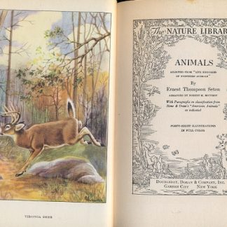 Animals (The nature library).
