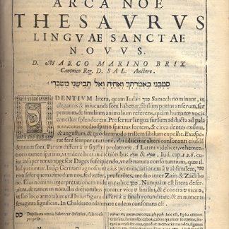 Arca Noe Thesaurus Linguae Sancatae Novus. Parte seconda.